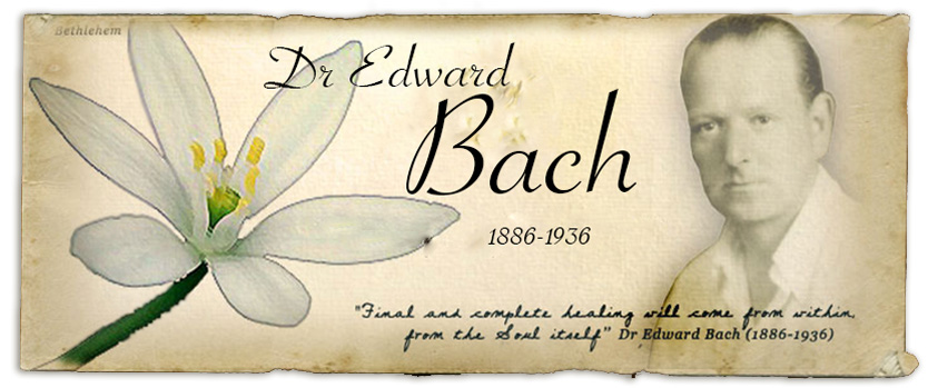 dr-edward-bach-graphic-1